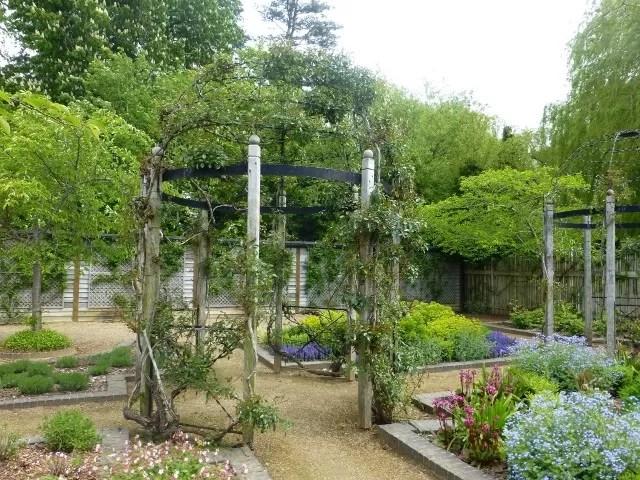 lavender garden blenheim
