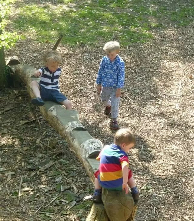 playing-on-the-log-train.