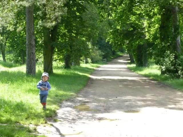 the long drive walk to Stowe gardens