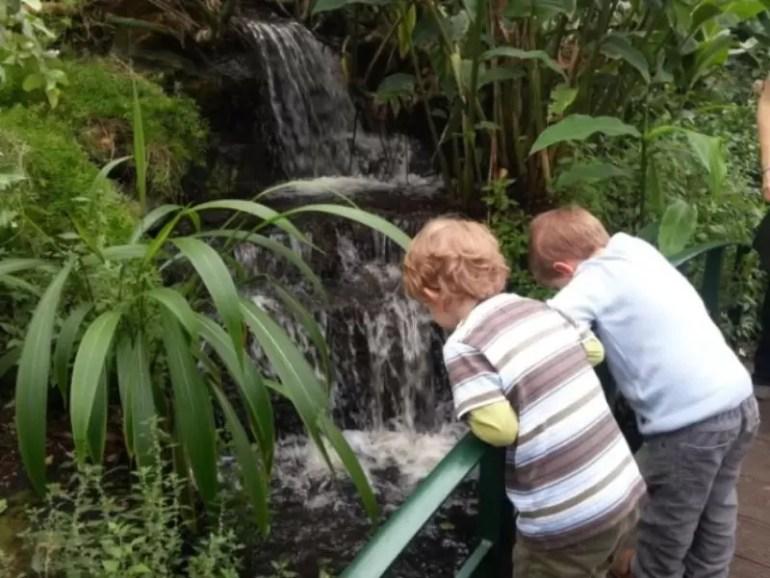 watching-the-waterfall.