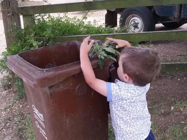 using the brown garden waste bin