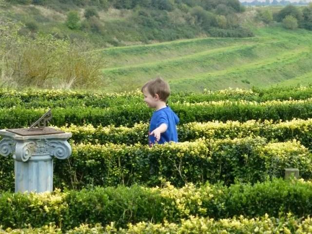 herb centre maze