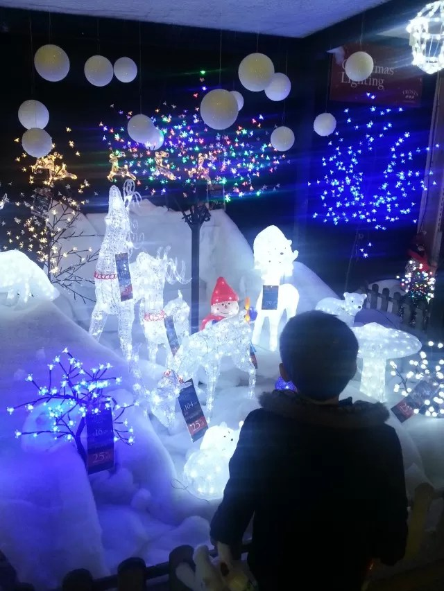 Frosts at Millets Farm 2014 Christmas display