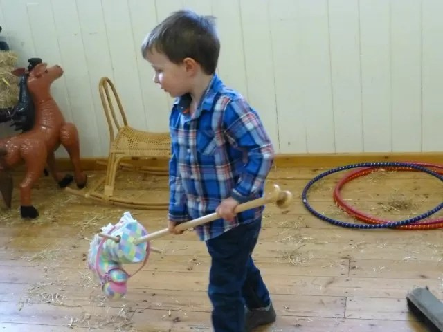 cleaning up with a hobby horse