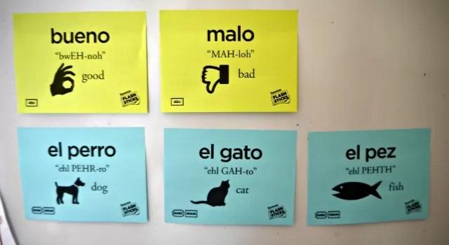 Spanish Flashsticks - learning spanish - bubbablueandme