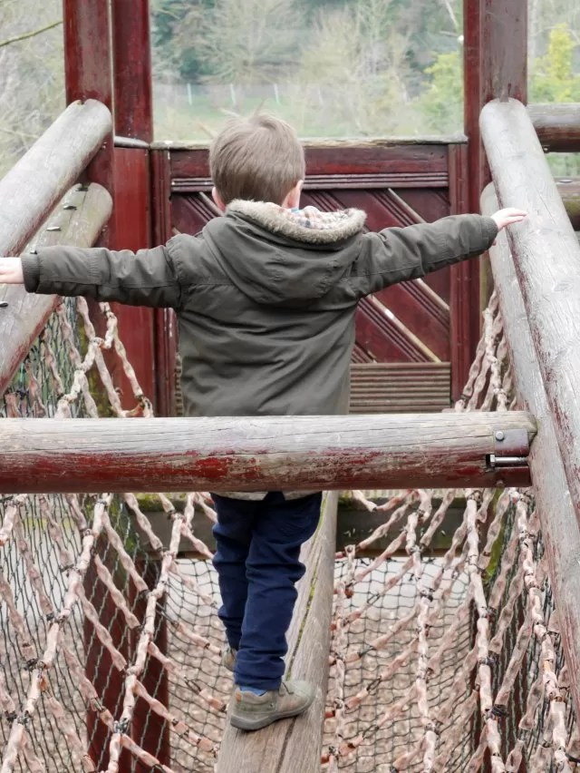 walking the bridge climbing frame
