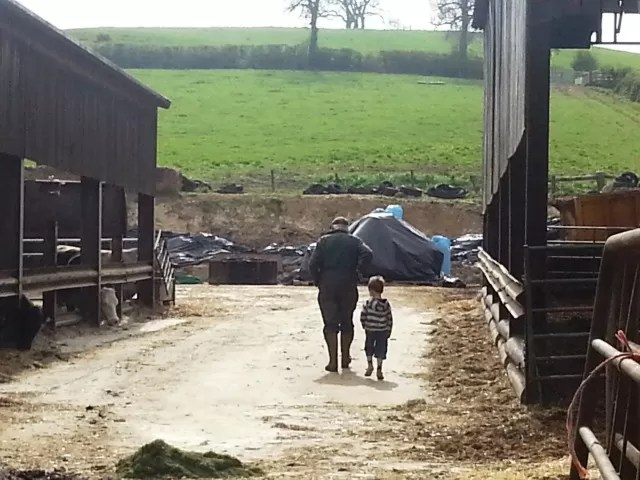 walking with his Gramp on the farm