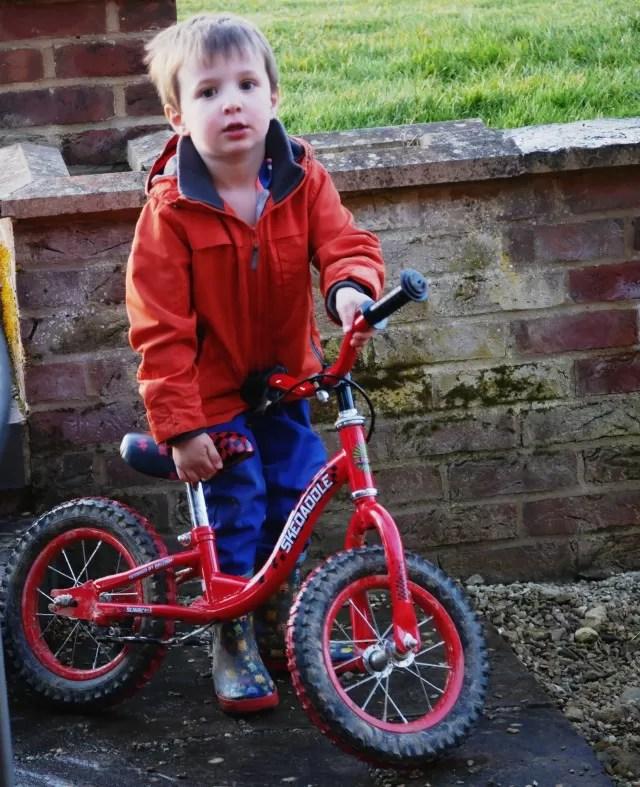 raleigh balance bike