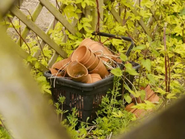 basket of flowerpots