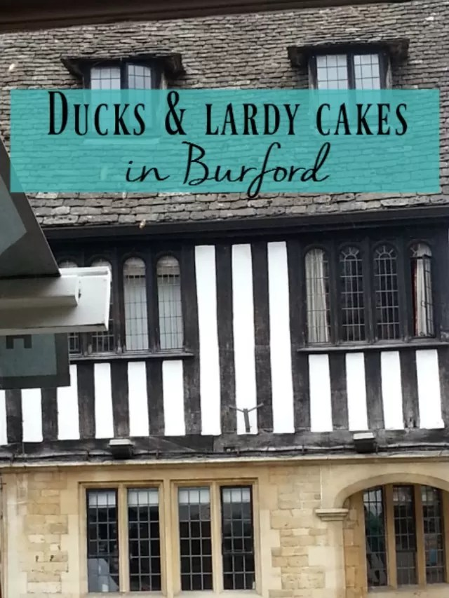 ducks and lardy cakes Burford - Bubbablue and me