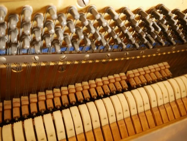 inside a piano - dampers and strings