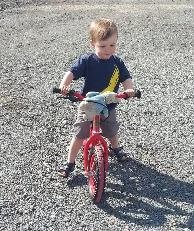riding a balance bike with Peter Rabbit toy cadging a lift