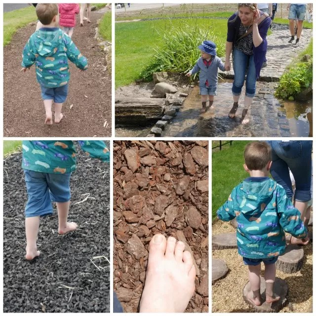 barefoot walk at Trentham Estate