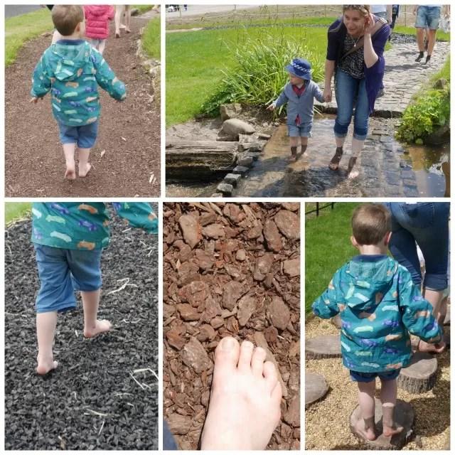 barefoot walk at Trentham Estate