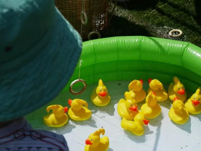 hook the duck game
