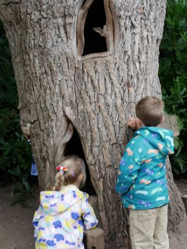 Pollard Inn fairy house - Rushmere Country Park