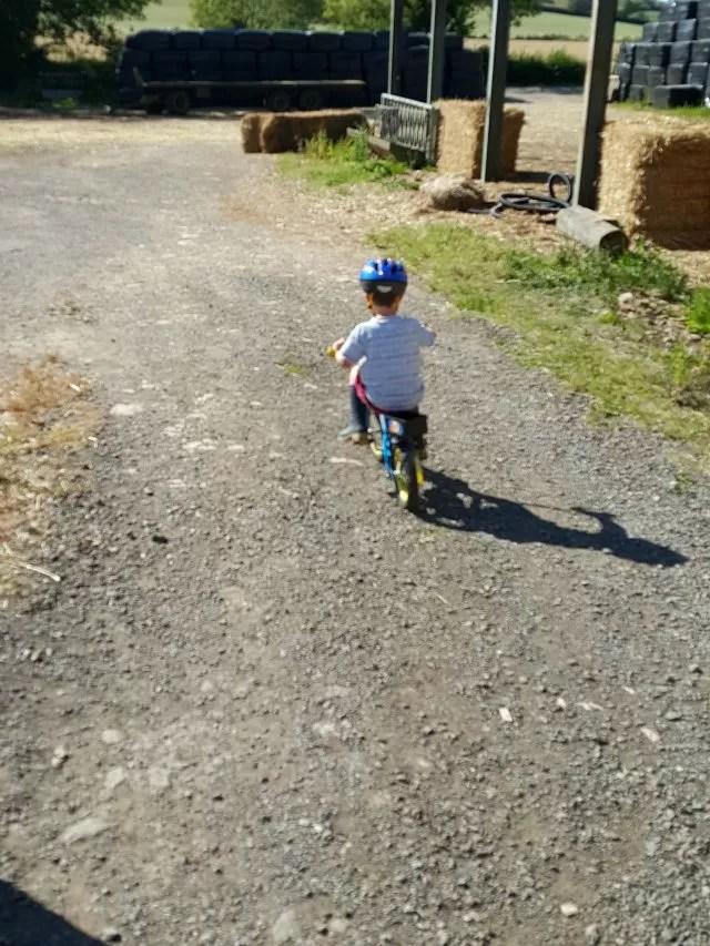 biking through the farmyard