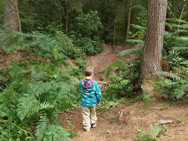 invesitgating the pit in Rushmere Country park