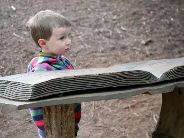 the giant bard book - Rushmere Country Park