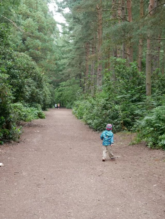 walkign throuhg the woods at Rushmere Park