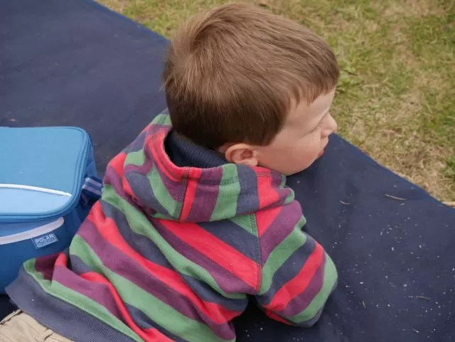 watching from the picnic rug