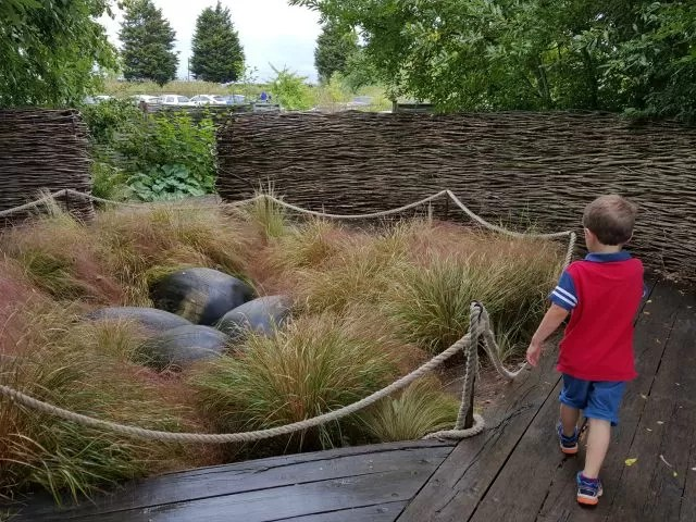 birds nest garden at butterfly world project