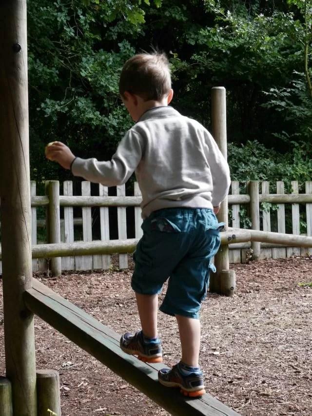 woodland playground at Avoncroft Museum