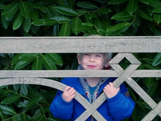 hiding behind the bench at Upton