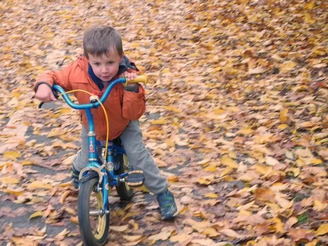 cycling through the leaves