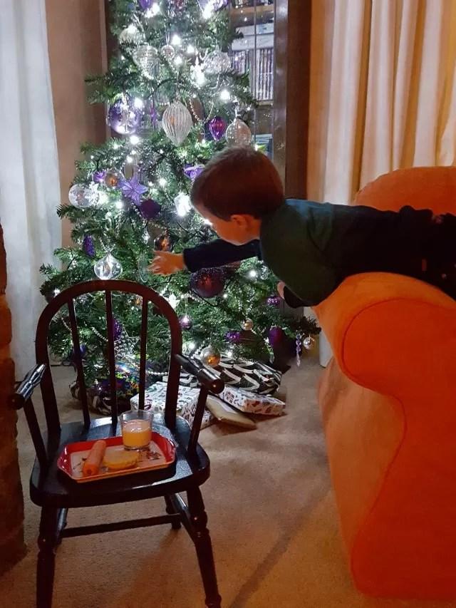 checking the tree before Santa visits