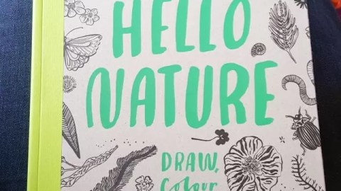 Hello Nature book review