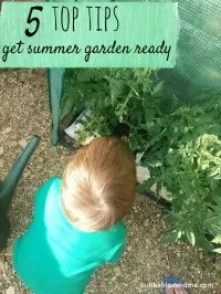 tips for making a summer ready garden