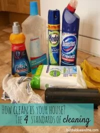 4 standards of cleaning
