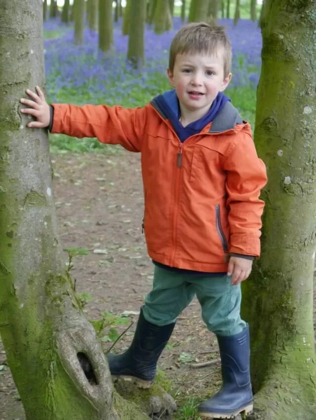 -tree climbing boy in a bluebell wood