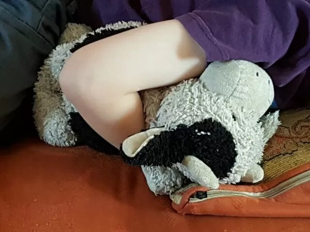 snuggled with his soft toy cow