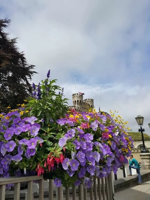view of Oxford castle and flowers