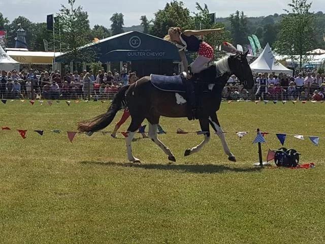 horse acrobatics