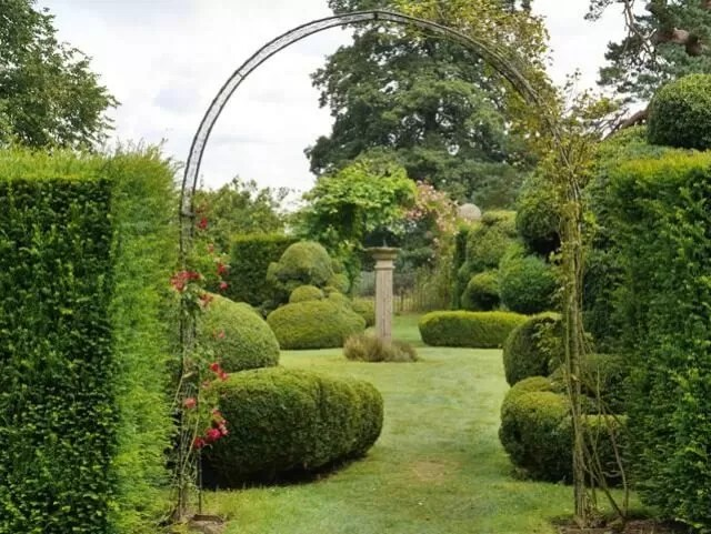Topiary in the garden at Chastleton House