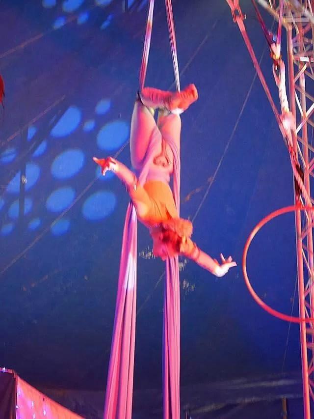 circus-silks