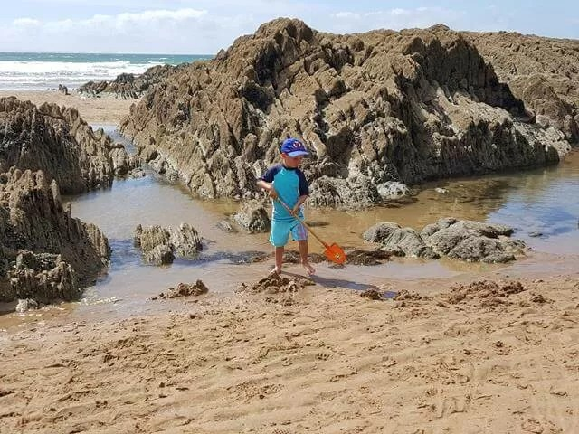 discovering rock pools