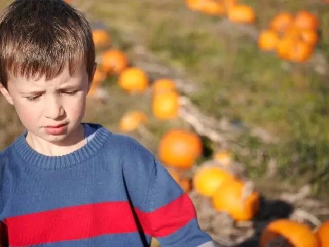 beyond pumpkins