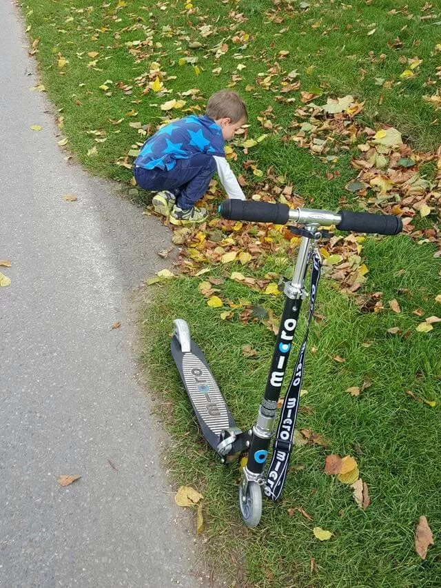 clearing drains of leaves