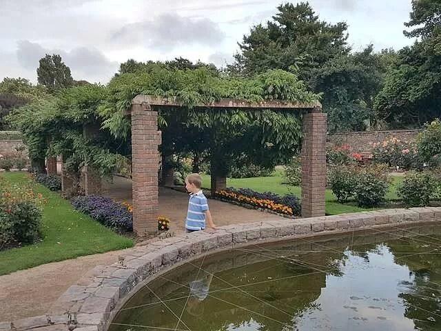enjoying-the-rose-garden-in-howard-davis-park