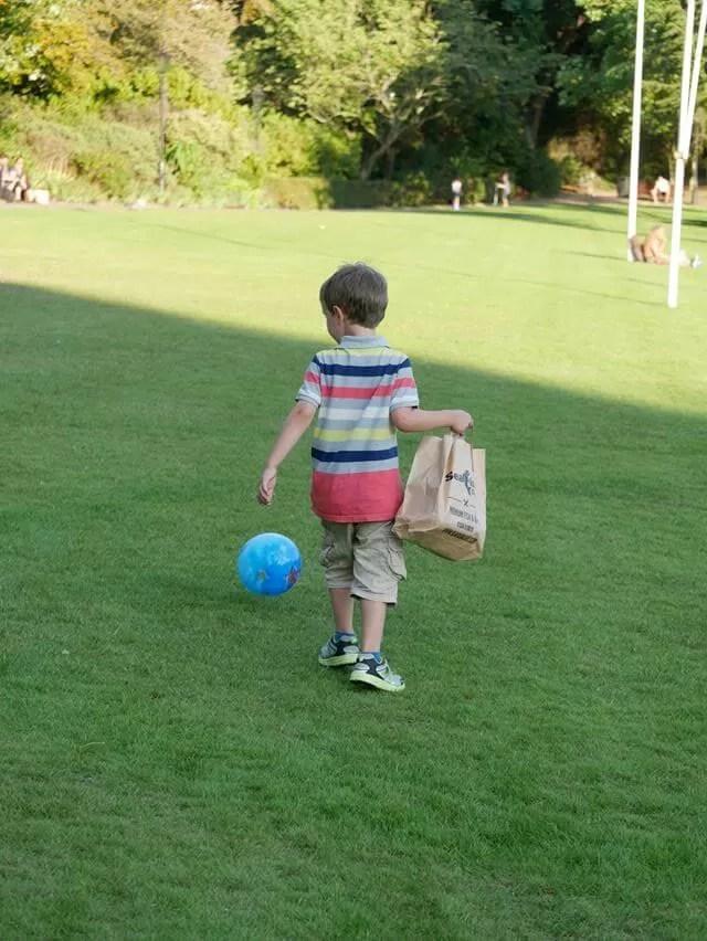 football-in-the-howard-davis-park
