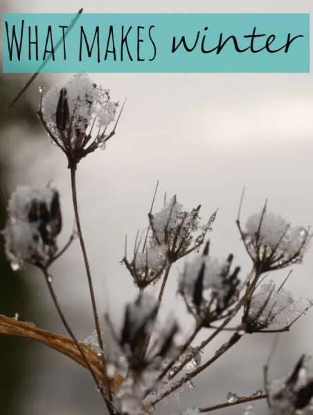 what-makes-winter-so-special-bubbablue-and-me