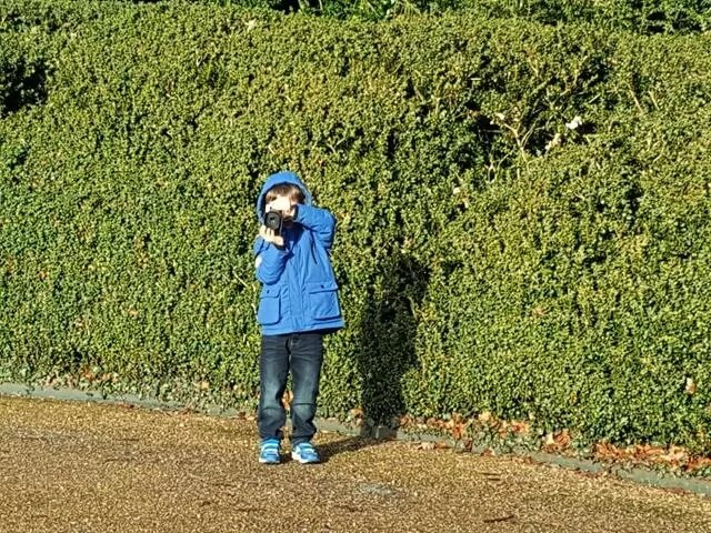 5yo taking photos