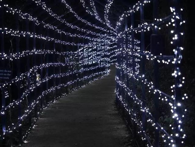 blenheim light walkway