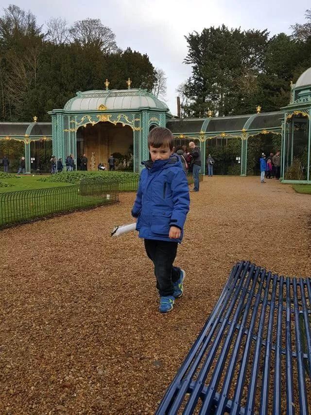 enjoying the aviary