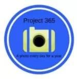 Project 365 logo