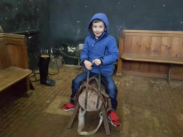 riding horses at mottisfont